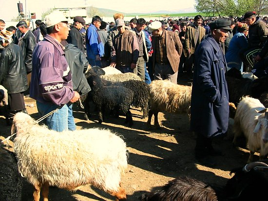 Wekelijkse veemarkt in Wanovka