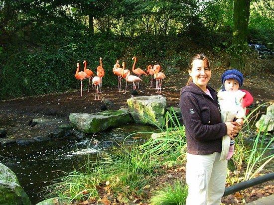 Elmira en Nathalie bij de flamingo's in de dierentuin van Emmen