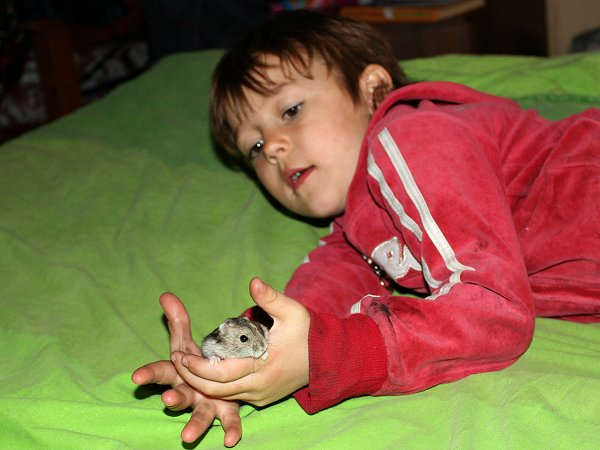 Isabel met hamster