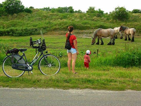 Elmira en Nathalie bekijken de huifkar paarden