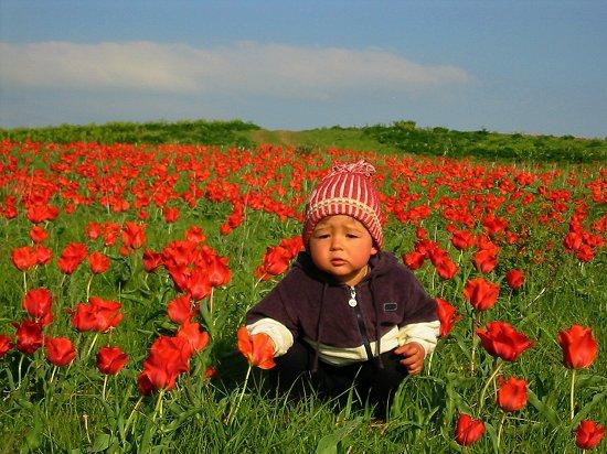Foto van Nathalie op Krasne Gorky tussen de tulpen