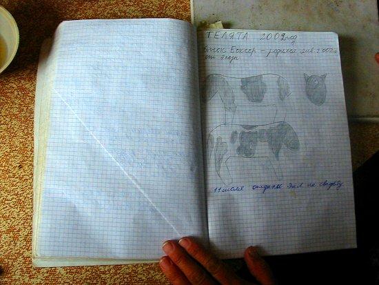 Het schetsboek van Elmira's mamma Natasha
