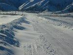 Dichtgesneeuwde weg