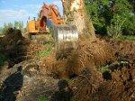 Boompje graven