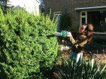 Elmira als tuinman