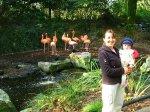 Elmira en Nathalie bij de flamingo's