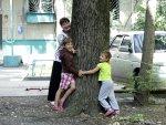 Kleine bomen worden groot