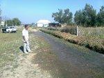 Irrigatie over de openbare weg